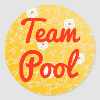 Team Pool Classic Round Sticker