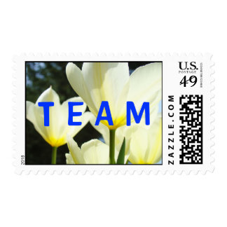 TEAM postage stamps White Tulip Flowers Yellow