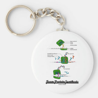 Team Protein Synthesis (Biology) Key Chain