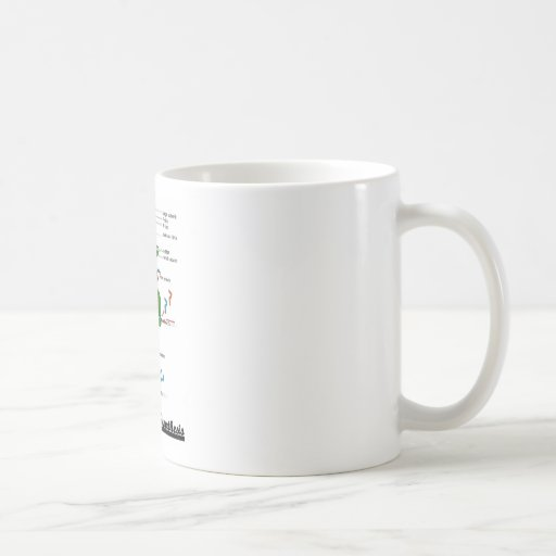 Team Protein Synthesis (Biology) Coffee Mug