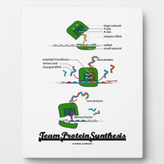 Team Protein Synthesis (Biology) Plaque