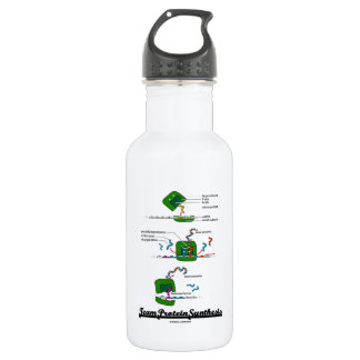 Team Protein Synthesis (Biology) Stainless Steel Water Bottle