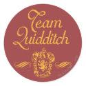 Team Quidditch sticker