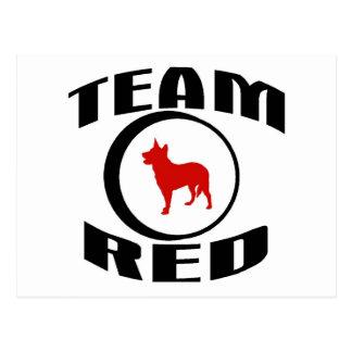 Team Red Postcard