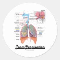 Team Respiration (Respiratory System) Classic Round Sticker