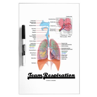 Team Respiration (Respiratory System) Dry Erase Board