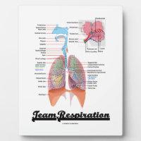 Team Respiration (Respiratory System) Photo Plaques