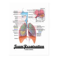 Team Respiration (Respiratory System) Postcard