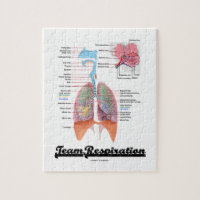 Team Respiration (Respiratory System) Puzzle