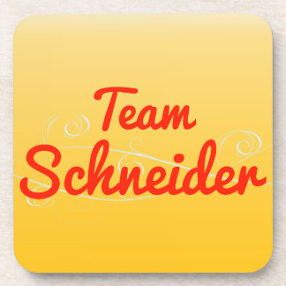 Team Schneider Coaster