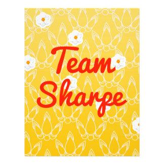 Team Sharpe Flyer