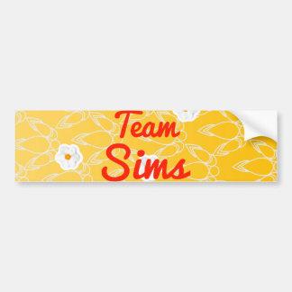 Team Sims Car Bumper Sticker