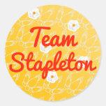 Team Stapleton Round Stickers