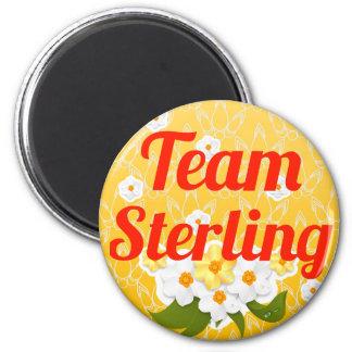 Team Sterling Fridge Magnets