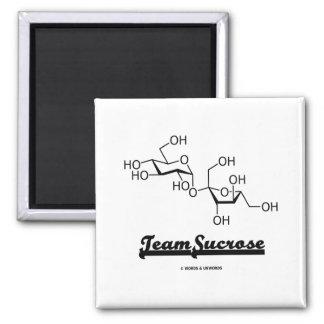 Team Sucrose (Sucrose Chemical Molecule) 2 Inch Square Magnet