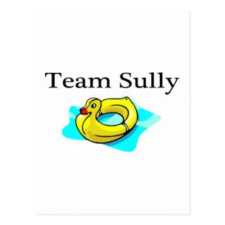 Team Sully (Duck) Postcard