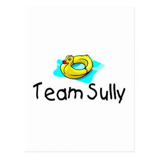 Team Sully Duck Postcard