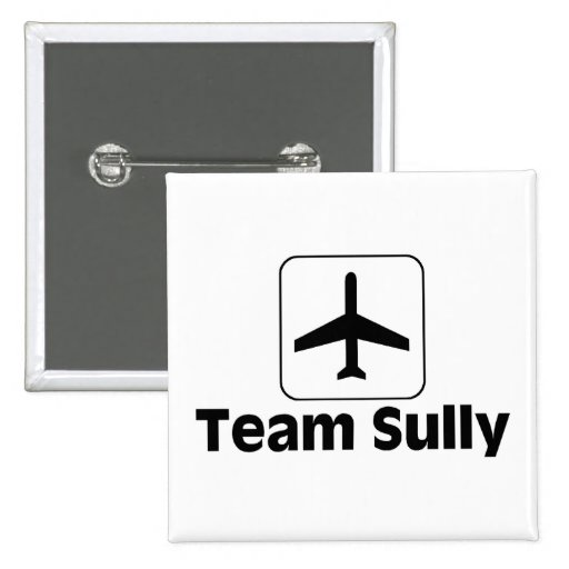 Team Sully Pin