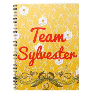 Team Sylvester Notebook