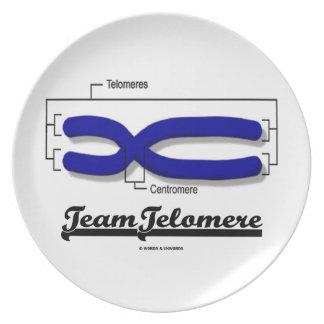Team Telomere (Biology Humor) Plate