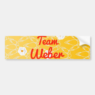 Team Weber Bumper Stickers