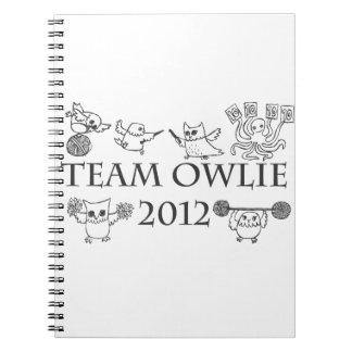 teamowlie2012 notebook