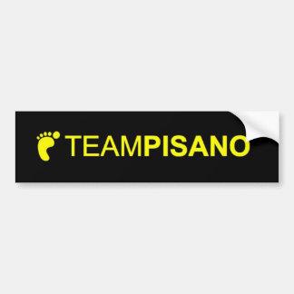 TeamPisano Bumper sticker Car Bumper Sticker