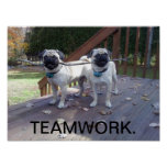 Teamwork Poster! Pugs working together! Poster