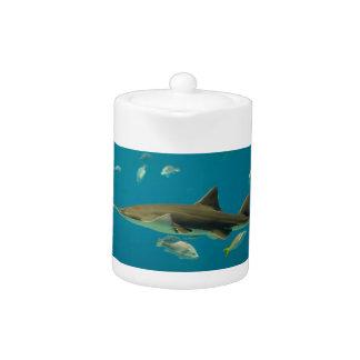 Teapot-Aquarium Teapot