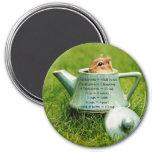 Teapot Chipmunk Measurement Equivalents Magnet