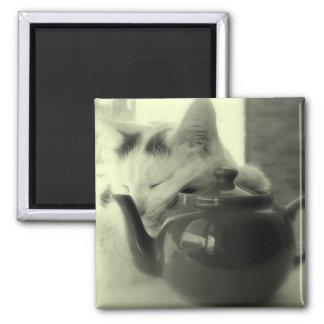 Teapot Pillow Magnet