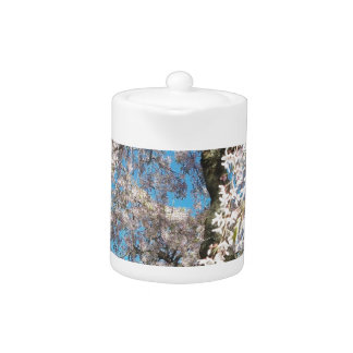 Teapot with White, Flowering Tree Photo