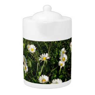 Teapot with wild flowers picture