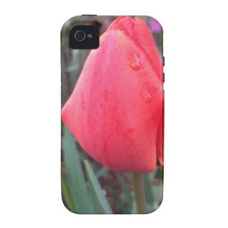 Teardrop Case-Mate iPhone 4 Cases