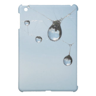 Tears of nature iPad mini case
