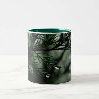 Tears of the Cedar Tree Coffee Cup Mugs