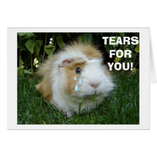 """TEARS ON """"YOUR 40th BIRTHDAY"""" FROM GERBIL Greeting Card"""