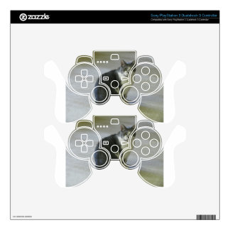 Tears PS3 Controller Skin
