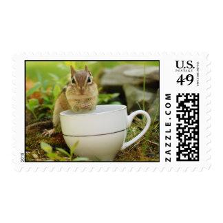 Teatime Chipmunk Postage