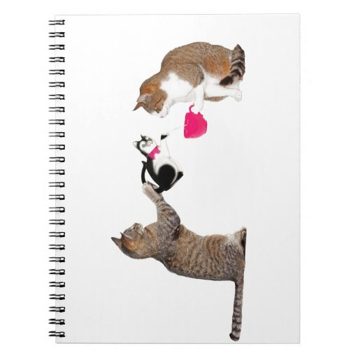Teatime for kitty cats spiral notebook