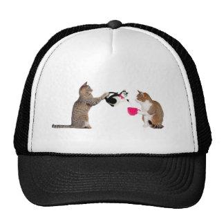 Teatime for kitty cats trucker hat