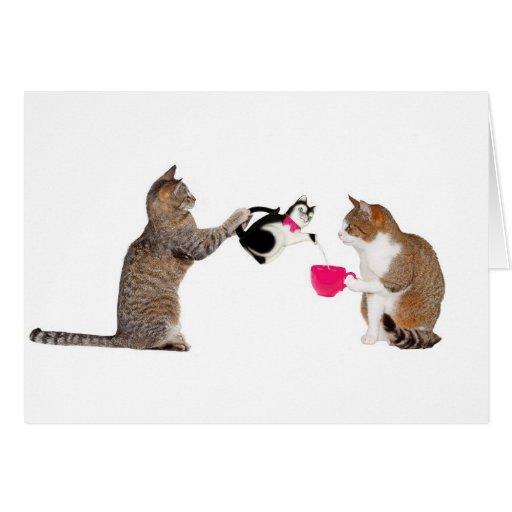 Teatime para los gatos del gatito tarjeta de felicitación