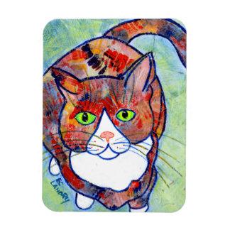 Technicolor Kitty #2 Rectangular Photo Magnet