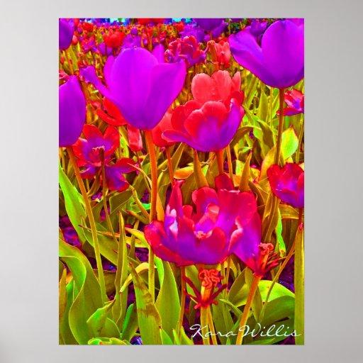 Technicolor Tulips Posters