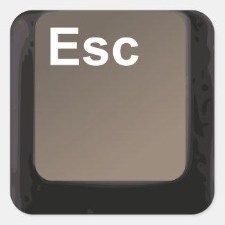 Tecla de escape/botón pegatina cuadradas personalizada