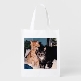 Ted And Cameron Grocery Bags