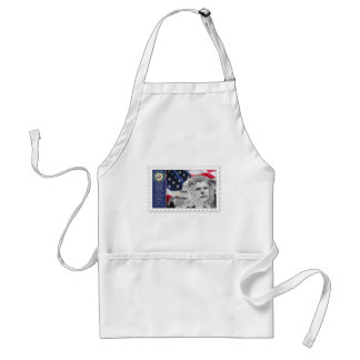 Ted Kennedy The lion of the senate Aprons