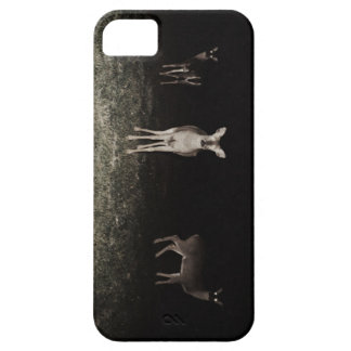 Ted Nugent - #4 - iPhone 5 Case