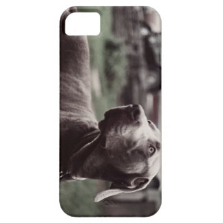 Ted Nugent - #5 - iPhone Case