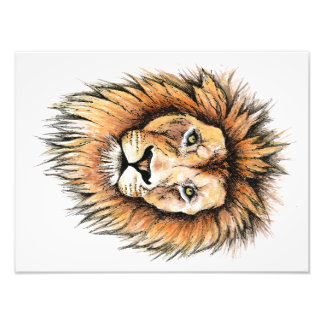 Ted the Lion Photo Print